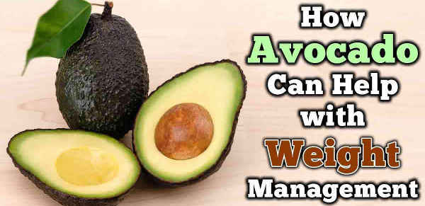 avocados thermogenic fat burning food